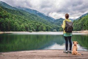 Les conseils utiles pour voyager sereinement avec votre chien